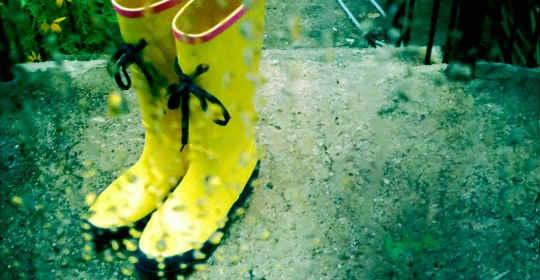 fashionable-rainboots