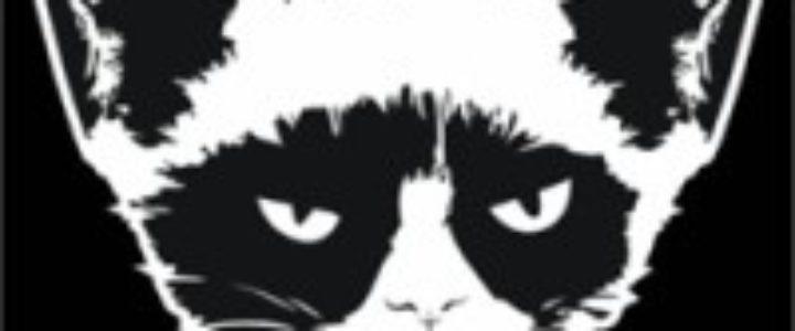 idakoos-grumpy-cat-shirt